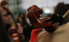 Orchestermusik_am_SteinNo022.jpg